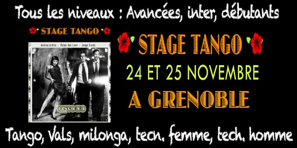 face-banier-stage-grenoble-nov-2018